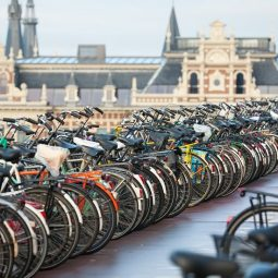 Daiktas, be kurio Olandijoje neapsieisite: dviratininko ABC