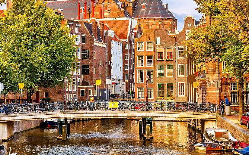 Darbas Olandijoje 2019