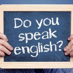 Kaip išgyventi Olandijoje, nemokant anglų kalbos?