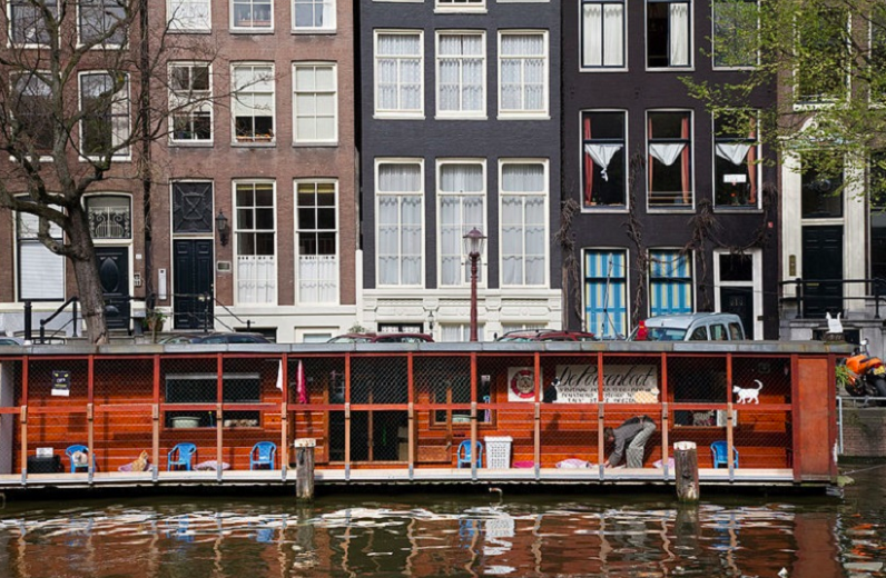 How to explore the capital with an empty wallet – 10 free attractions in Amsterdam